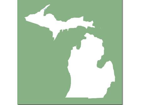 Michigan Annual XLV