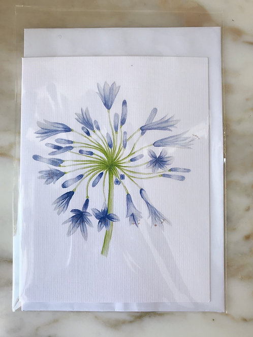 Flowers of Hanworth Greeting Cards pack of 3