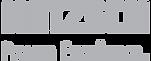cliente_logo_netzsch.png
