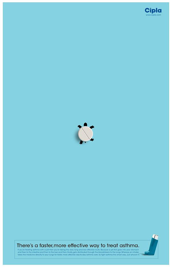 1_Turtle -02.jpg