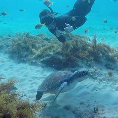 PADI Divemaster Internship Byron Bay Australia