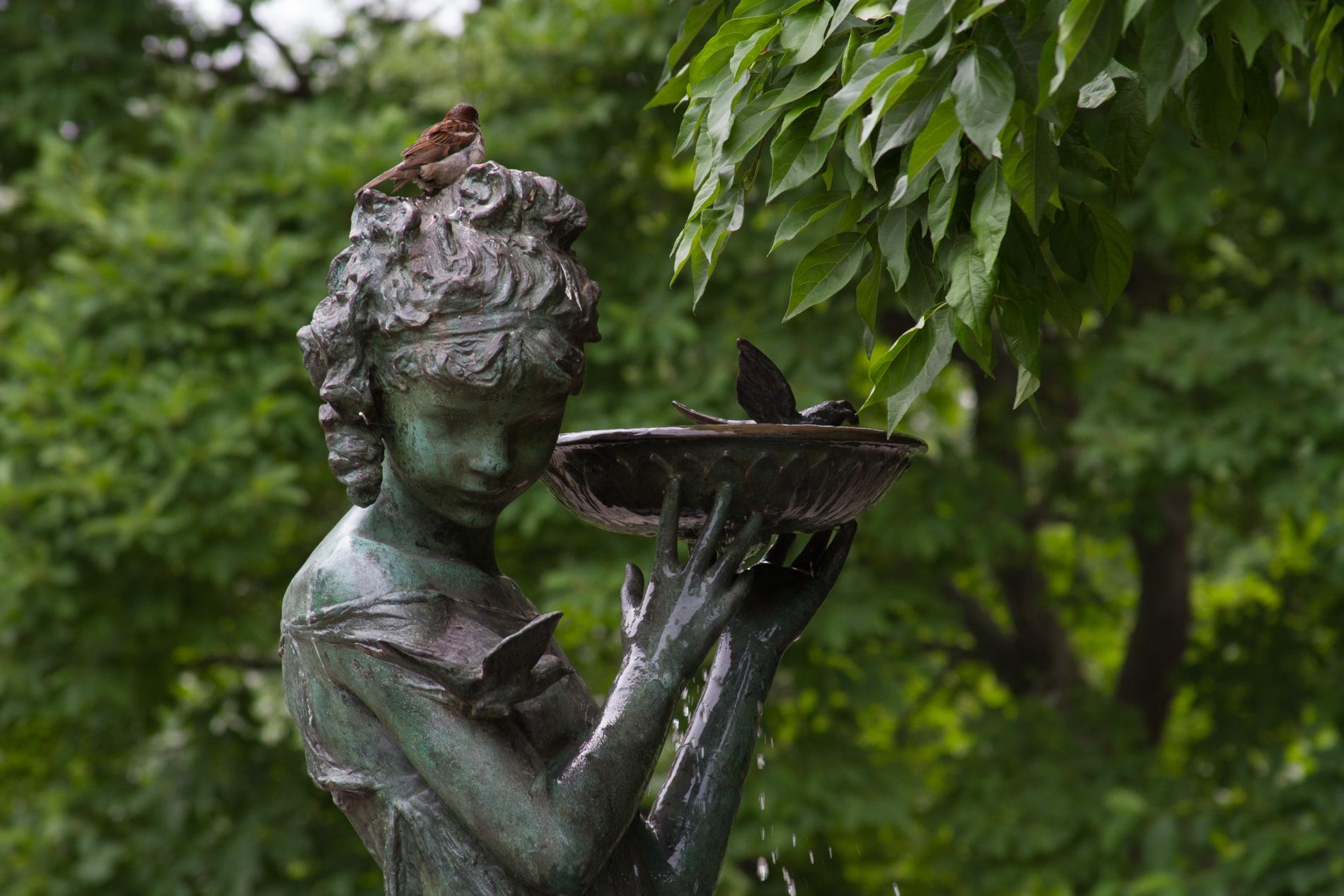 Burnett Memorial Fountain [1204]