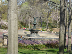 Bethesda Fountain [0802]