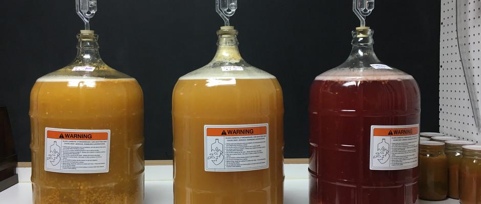 Home Brewing Hard Cider