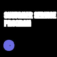 Customer Service Program