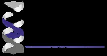 BLGroup Logo Blog ADN