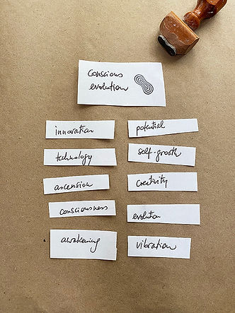 1 conscious evolution_ch.jpg