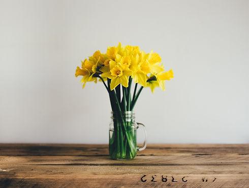 yellow-2590841_1280.jpg