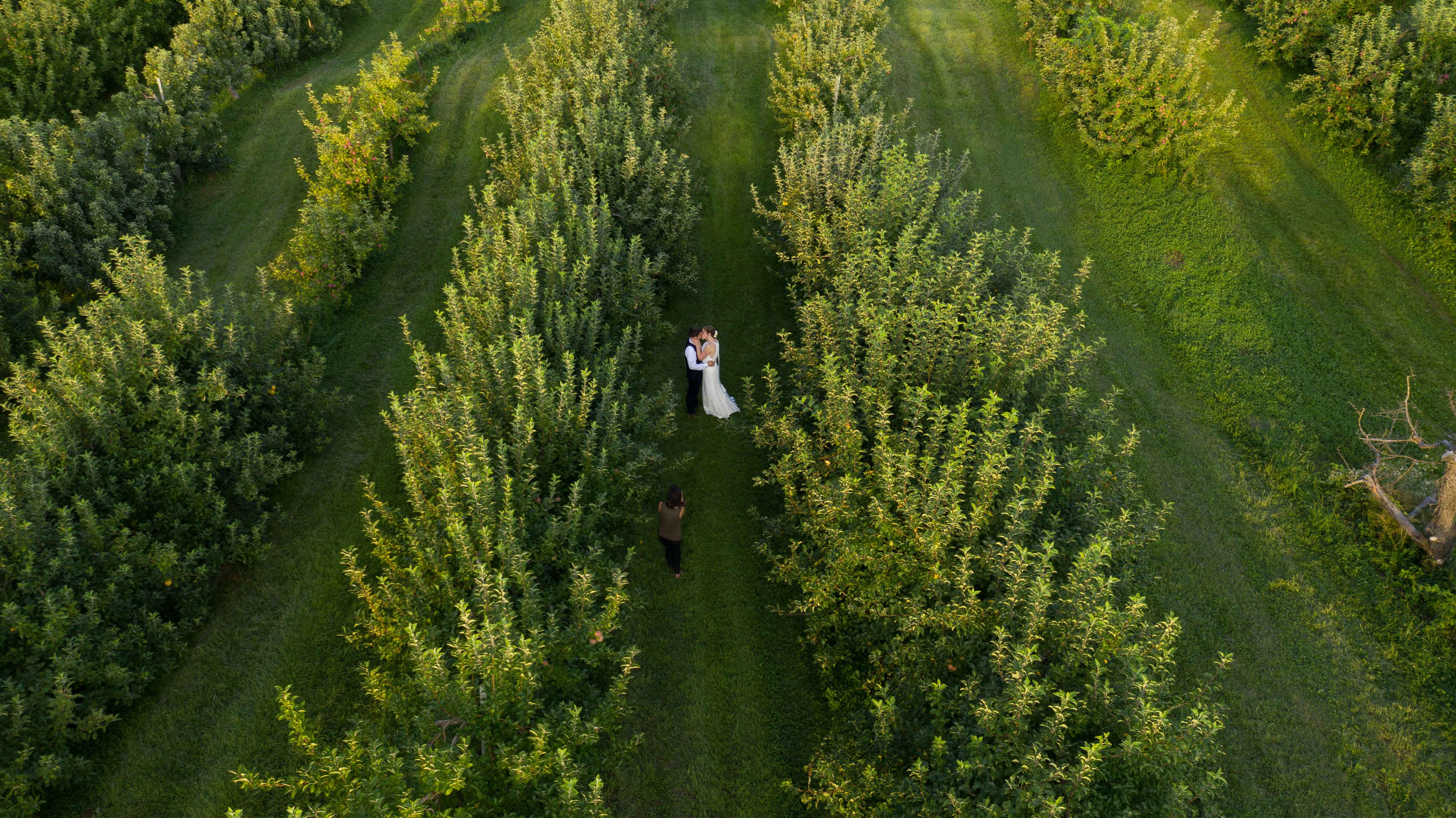 Smolak Farms Wedding