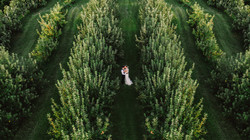 Smolak Farm Wedding - North Andover, MA