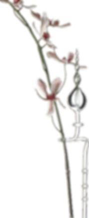 Orchideenhalter.png