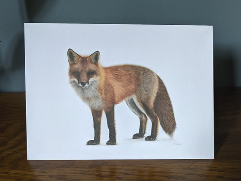 Mr Fox Greeting Card