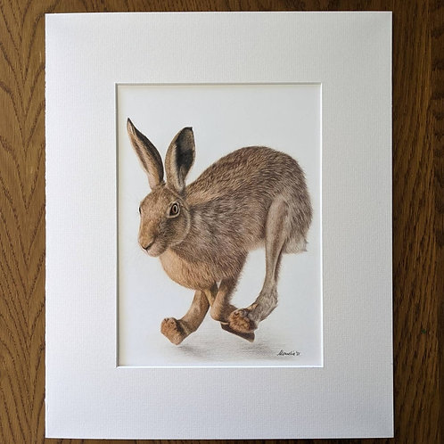 First Catch Your Hare! A4 Giclée Print