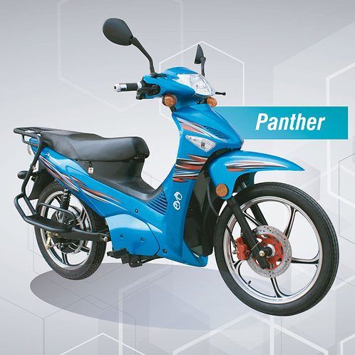 Panther 3000W