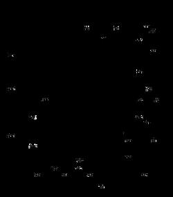 BIG-YANK-900x1024