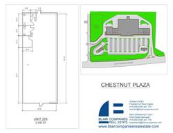 Chestnut-228