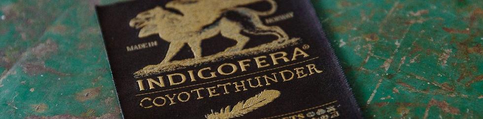 Indigofera_coyotethunder.JPG