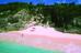 Bermuda Paradise