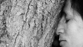 Wat als ik m'n neus eens in een boom duwde...?