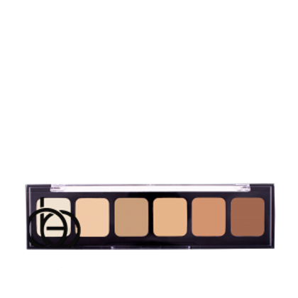 Correct & Conceal Palettes