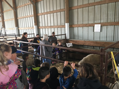 12th Annual Davis Dairy Day grows to over 500 students