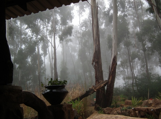 Cottage misty view