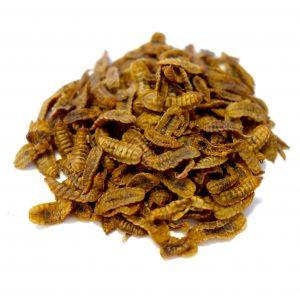 Dried Larvae