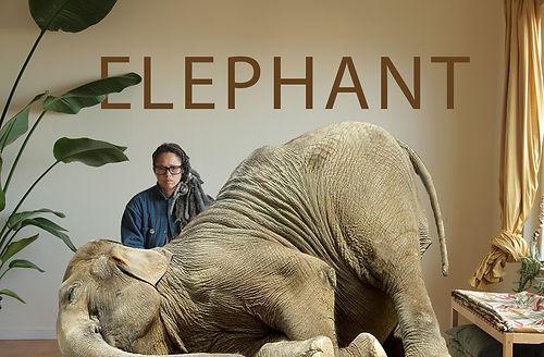 elephant title card_IMG_7965.jpg
