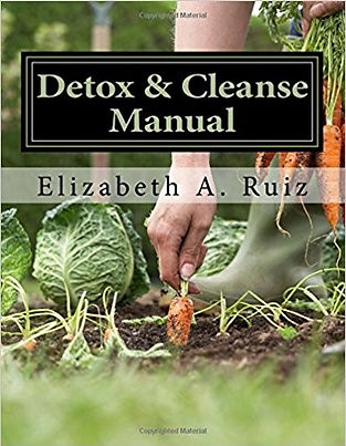detox book cover RUIZ.jpg