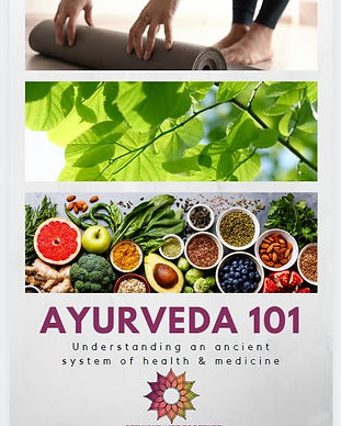 Ayurveda 101 ebook cover.JPG