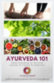 Ayurveda 101 ebook cover.JPG