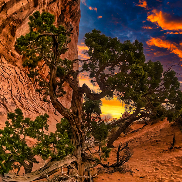 Sunset at Pine Tree Arch