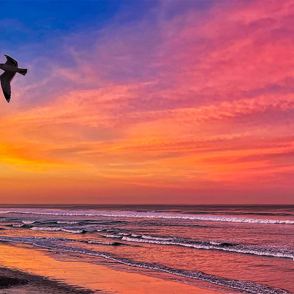 Sunrise at Torrey Pines Beach