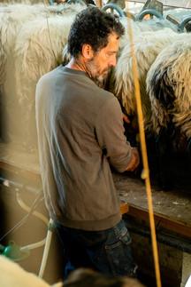 Olivier, paysans - Apremont