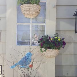 Spring outdoor arrangement
