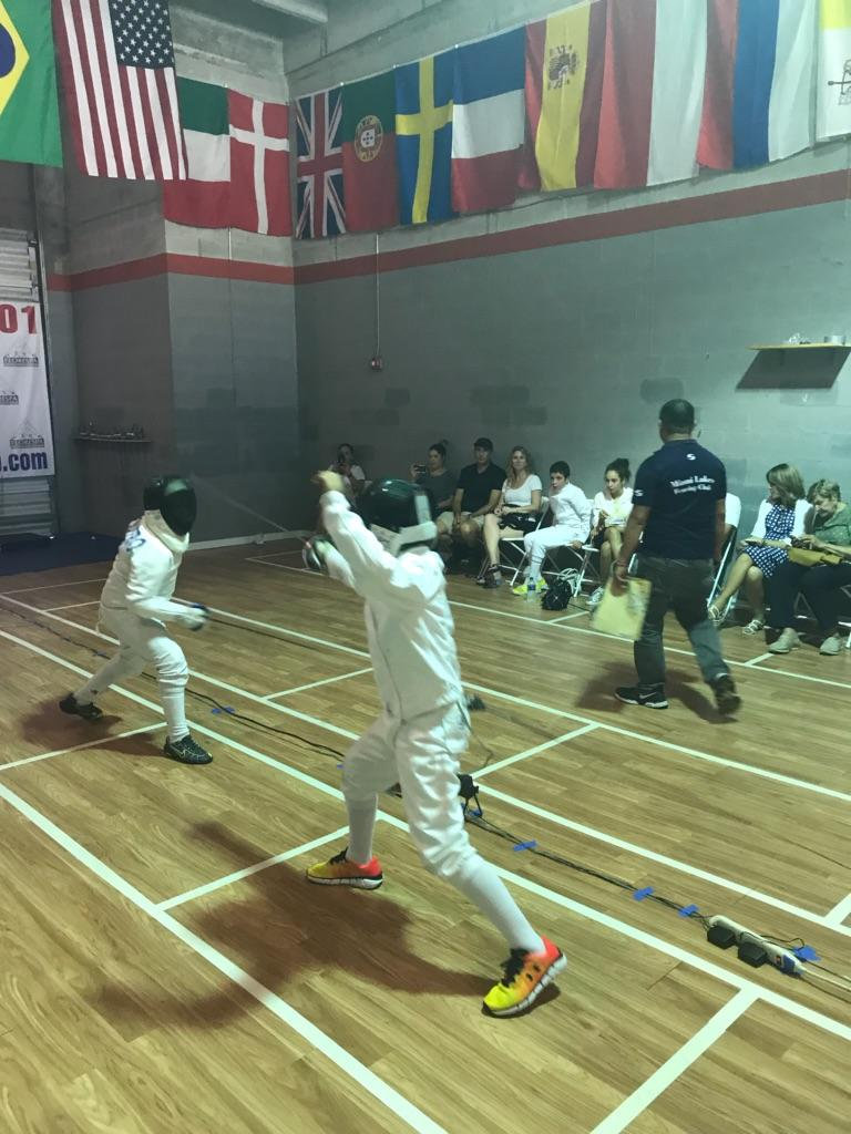 Free Fencing Combat