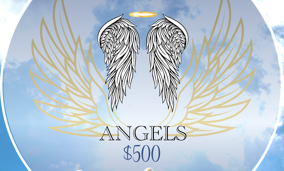 $500 Contribution