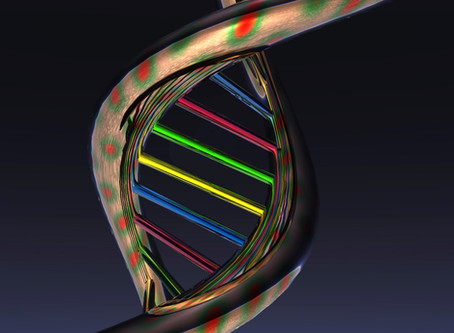 NEW GENE ACTIVATOR - WHAT IS IT?