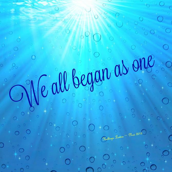 We Begin As One