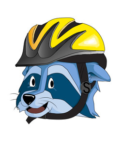 bike helmet final