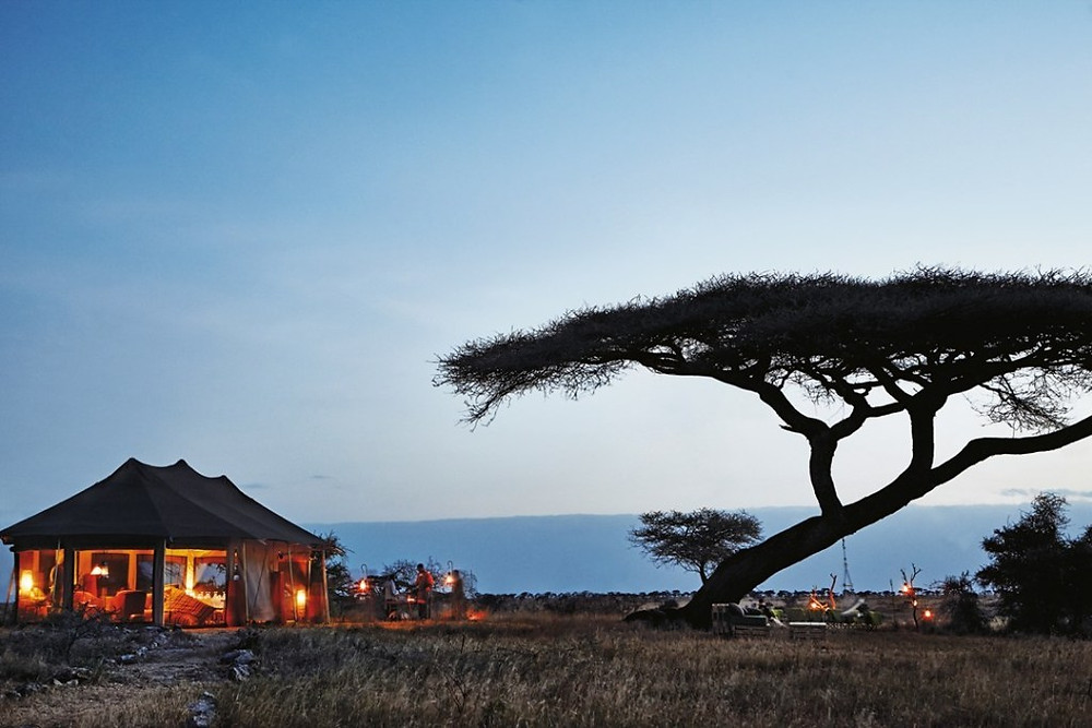 Plains Camp, Serengeti, Tanzania