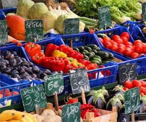 Culinary Italy