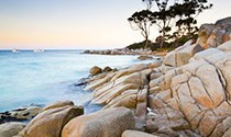 The Wild Island of Tasmania