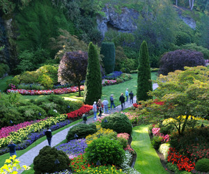 BD Flower Gardens