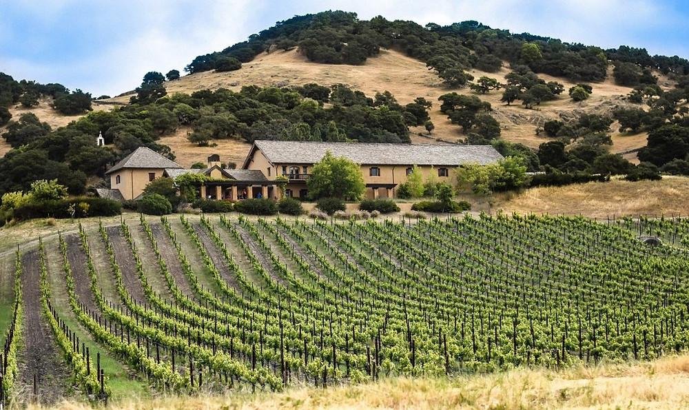 napa valley, california, wine country vacations, k3 travel