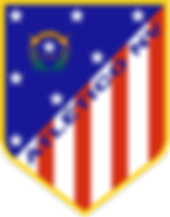 Atlético_NV_logo_edited_edited_edited.pn