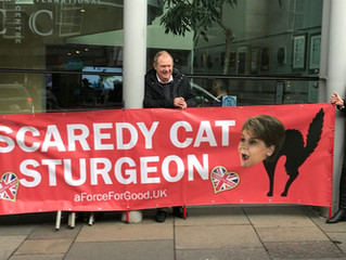 Scaredy Cat Sturgeon and Free Speech