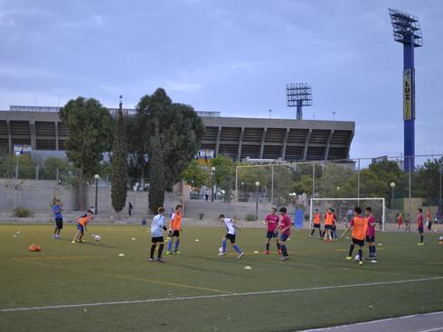 Training Resumes May 27, 2017