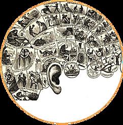Psychoacoustique - AudioVitality