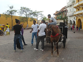 Locals with a horse and carriage talk in the main square in Cartagena.